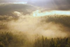 Incredible misty autumn landscape. Royalty Free Stock Photography