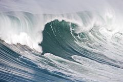Incredible oceanic wave in Portugal Stock Image