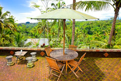 Incredible panoramic view at jungle of Bali Stock Photos
