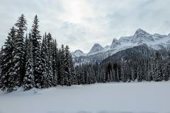 Incredible snowy views from Island Lake in Fernie, British Columbia, Canada. The majestic winter background is beautiful stock images