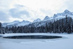Incredible snowy views from Island Lake in Fernie, British Columbia, Canada. The majestic winter background is beauty. stock image