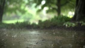 Incredible steady satisfying close up slow motion shot of downpour rain drops falling on pavement asphalt concrete road. Fascinating close up steady satisfying stock video footage