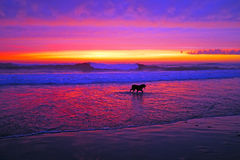 Incredible sunset in Portugal Stock Image