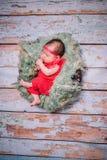 Sweet newborn baby sleeping in children nest Stock Photos