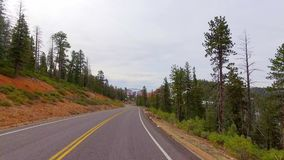 Incredibly beautiful landscape in Bryce Canyon spring road driving POV. Geological formation weather water erosion. Nature ecological sensitive landscape and stock footage