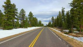 Incredibly beautiful landscape in Bryce Canyon spring road driving POV. Geological formation weather water erosion. Nature ecological sensitive landscape and stock video