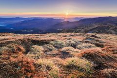 Incredibly beautiful morning of a misty autumn dawn in the mountains III Stock Images