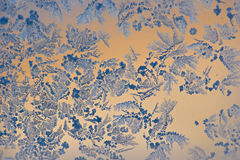Incredibly beautiful patterns. Are drawn by a frost on the windows of houses Stock Image