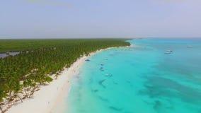Incredibly härlig ö med vita sandstränder, palmträd och det crystal havet för blått vatten lager videofilmer