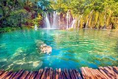 Incredibly härligt sagolikt magiskt landskap med en vattenfall royaltyfri bild