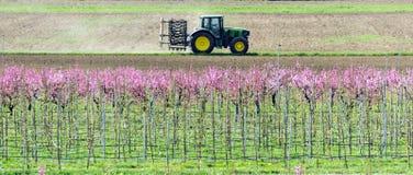 Incremento gli alberi da frutto e del trattore immagini stock libere da diritti