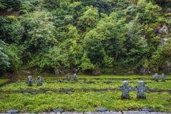 Incroci delle pietre tombali su vecchio cemetry in Irlanda Immagini Stock