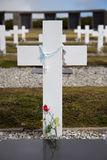 Incrocio al cimitero dell'Argentina, Falkland Islands Fotografia Stock