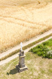 Incrocio con il campo di grano Fotografie Stock