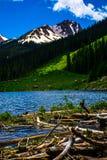 Incrocio della diga del castoro che dirige Rocky Mountain High Fotografia Stock Libera da Diritti