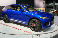 Incrocio di F-passo di Jaguar Fotografie Stock