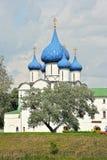 Incrocio e coppie alla cattedrale del Cremlino Fotografie Stock