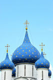 Incrocio e coppie alla cattedrale del Cremlino Fotografia Stock Libera da Diritti
