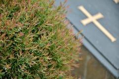 Incrocio sulla pietra tombale in cimitero Fotografia Stock Libera da Diritti