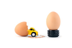 Incubation of eggs. A birth of car Royalty Free Stock Photography