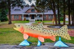 Incubazione nazionale del pesce - Leadville, CO Fotografia Stock