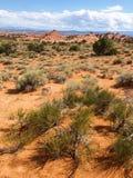 Incurva il parco nazionale, Utah, U Fotografie Stock Libere da Diritti