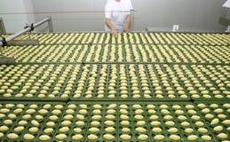 Indústria alimentar 5 novos Foto de Stock Royalty Free