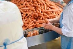 Indústria alimentar: trabalhadores na produção de pirralho alemão original imagens de stock royalty free
