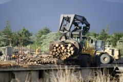 Indústria de madeira - madeira de NZ Fotos de Stock Royalty Free