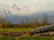 Indústria de madeira sob Krivan imagens de stock