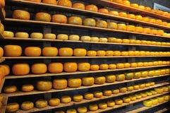 Indústria de queijo Fotos de Stock