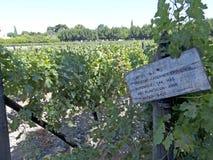 Indústria de vinho no vale de Maule, o Chile foto de stock