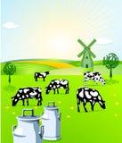 Indústria leiteira