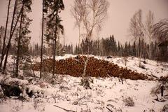 Indústrias da madeira serrada e da madeira Imagens de Stock