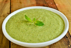 Indain green Chutney. Indian green Chutney,made from coriander,mint,,garlic and spices Stock Image