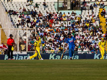 Inde contre le cricket d'Australie Photos stock