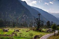 Inde du Cachemire image stock