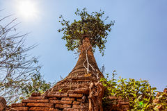 Indein, Inle Lake Stock Images