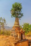 Indein, Inle Lake. Ancient Stupas at Indein overgrown with plants, Inle Lake, Myanmar Royalty Free Stock Photos
