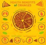 Indennità-malattia arancio Immagini Stock Libere da Diritti