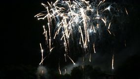 Independence day fireworks show in the park stock footage