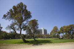 Independence Park & Hilton Hotel, Tel Aviv Royalty Free Stock Images