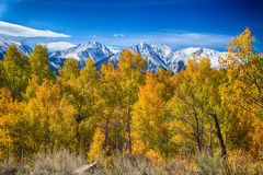 Independence Pass Autumn View Royalty Free Stock Photography