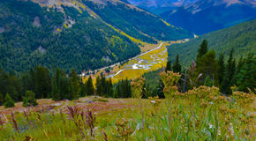 Independence Pass Colorado. View from the Independence Pass, Colorado Landscape stock photography