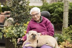 Independent Elderly Woman Outside in Wheelchair with Dog. In Lap Stock Photos