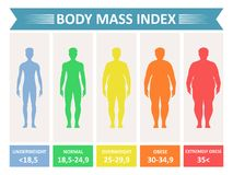 Index mass body. Rating chart of body fat based on height and weight in kilograms. Vector flat style cartoon illustration isolated on white background stock illustration