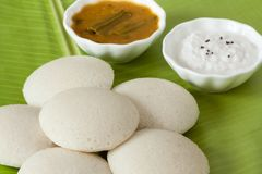 Indiër nutteloos met chutney en sambar royalty-vrije stock fotografie