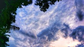 Indiański zmierzchu niebo z chmurami i drzewami obrazy royalty free