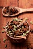 Indiańskie pikantność, ziele &, obraz stock