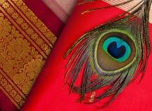 Indiańscy jedwabniczy saries fotografia royalty free